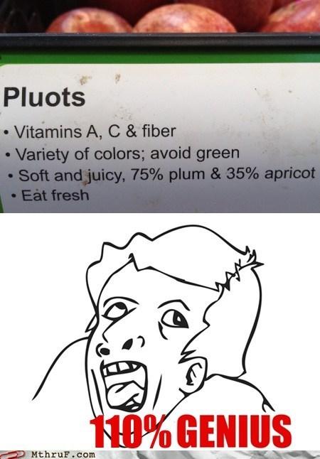 genius guy,genius meme,pluots,genius,math