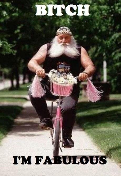 biker,girly bike