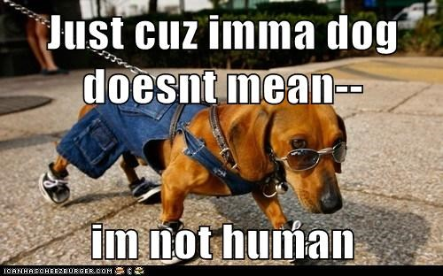 Just cuz imma dog doesnt mean--  im not human