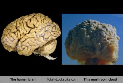 The Human Brain Totally Looks Like This Mushroom Cloud