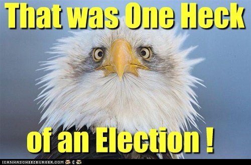 That was One Heck of an Election!