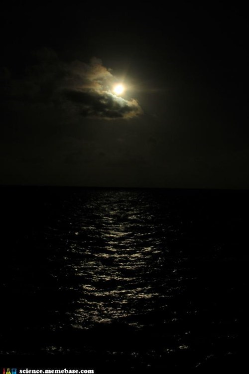 Eclipse in Australia-Photo taken off one of the Pro Dive Cairns vessels on the Great Barrier Reef!