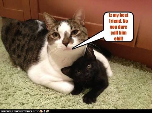 Iz my best friend. No you dare call him ebil!