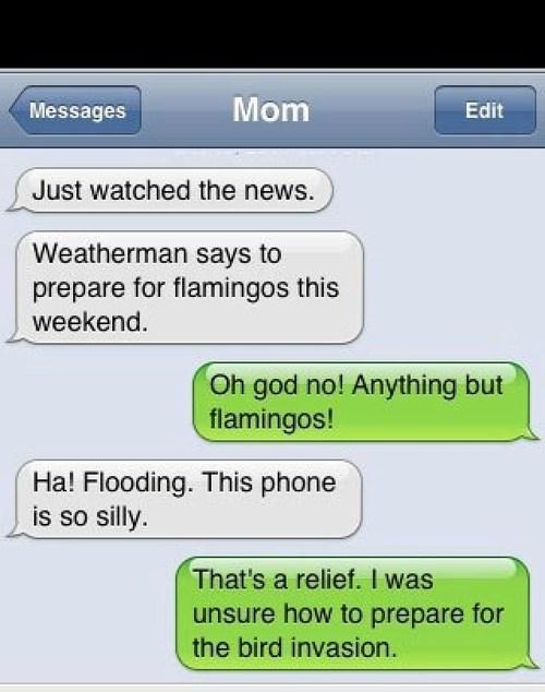 You Can't Predict Flamingos