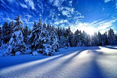 snow,pristine,winter,mountain