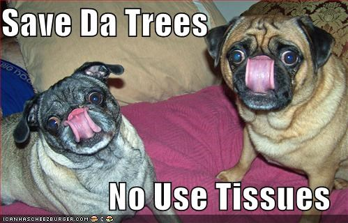Save Da Trees  No Use Tissues