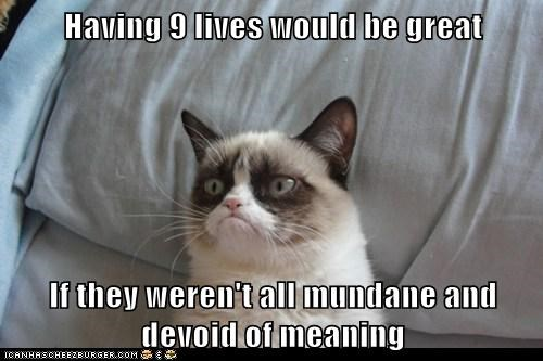 Having 9 lives would be great  If they weren't all mundane and devoid of meaning
