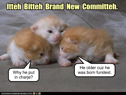Itteh  Bitteh  Brand  New  Committeh.