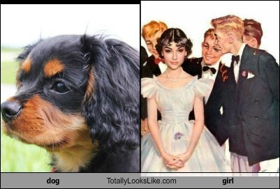 dog  Totally Looks Like girl