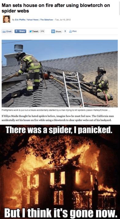 news,blowtorch,IRL,fire,spider