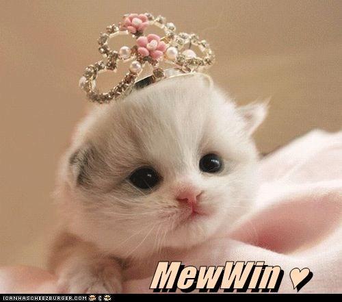 MewWin ♥
