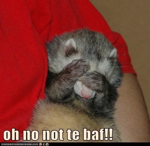 oh no not te baf!!