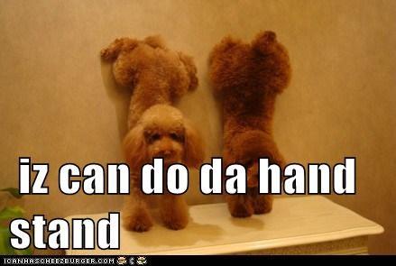 iz can do da hand stand
