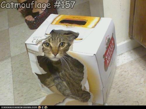 Catmouflage #157