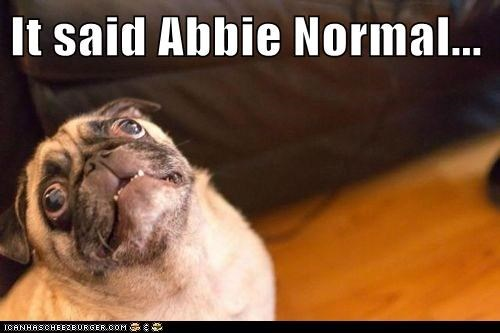 It said Abbie Normal...