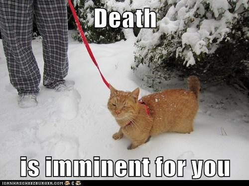 Death  is imminent for you