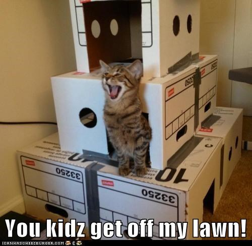 You kidz get off my lawn!