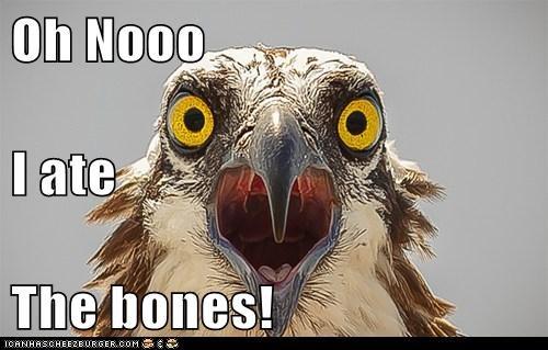 Oh Nooo I ate The bones!