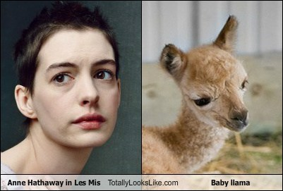 Anne Hathaway in Les Mis Totally Looks Like Baby llama
