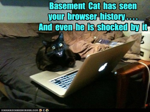 Basement  Cat  has  seen     your  browser  history . . . .   And  even  he  is  shocked  by  it