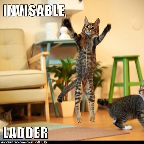 INVISABLE  LADDER
