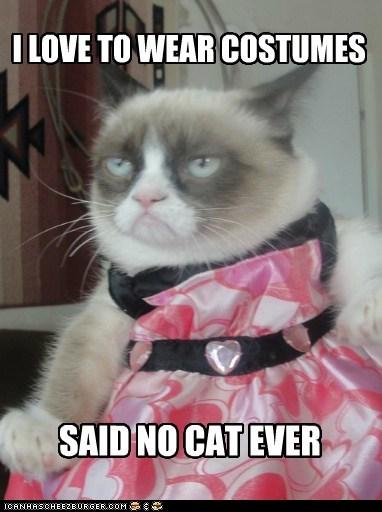 COSTUME CAT