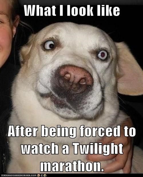 What I look like  After being forced to watch a Twilight marathon.