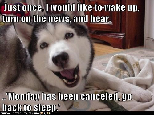 Just once, I would like to wake up, turn on the news, and hear.  ..'Monday has been canceled, go back to sleep.'