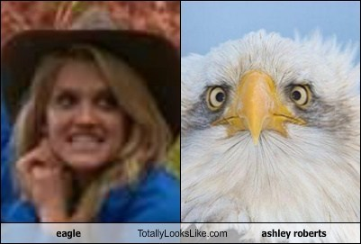 eagle Totally Looks Like ashley roberts