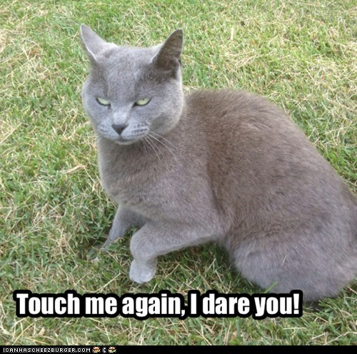Touch me again, I dare you!