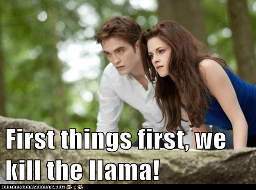 First things first, we kill the llama!