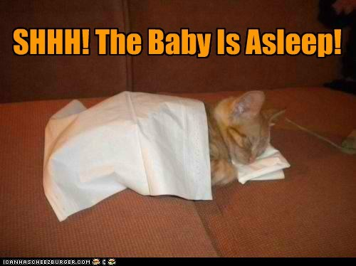 SHHH! The Baby Is Asleep!