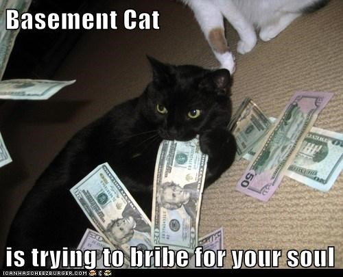 Basement Cat  is trying to bribe for your soul