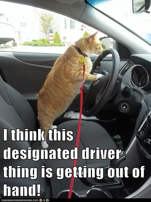I think this designated driver thing is getting out of hand!