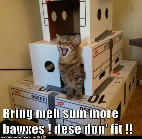 Bring meh sum more bawxes ! dese don' fit !!
