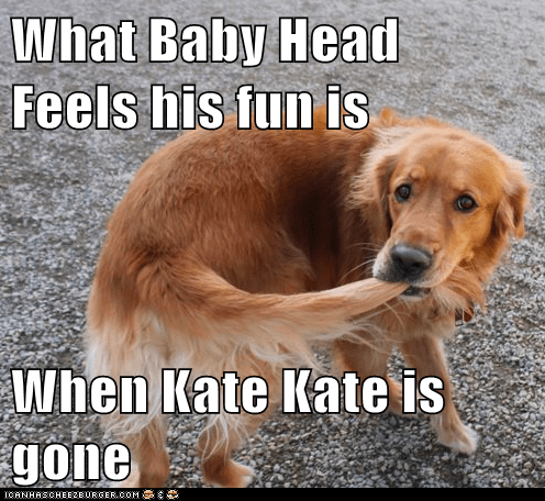 What Baby Head Feels his fun is   When Kate Kate is gone