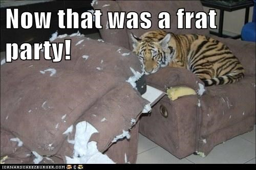Now that was a frat party!