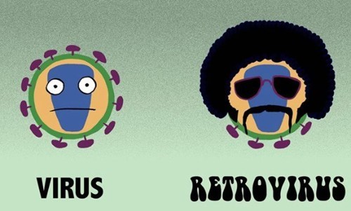 Get With the Times, Retrovirus