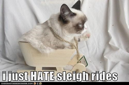 i just HATE sleigh rides