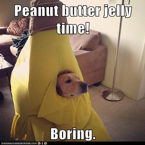 Peanut butter jelly time!  Boring.