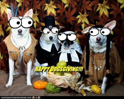 HAPPY DOGSGIVING!!!