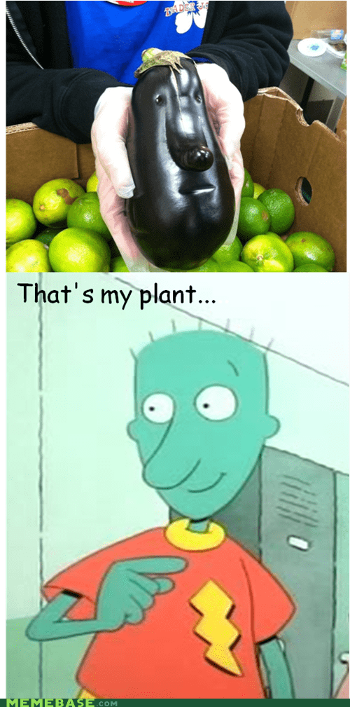 skeeter,cartoons,plant
