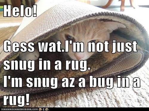 Helo! Gess wat.I'm not just snug in a rug. I'm snug az a bug in a rug!