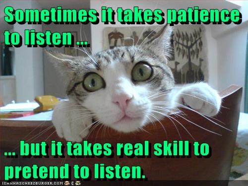 Sometimes it takes patience to listen ...   ... but it takes real skill to pretend to listen.