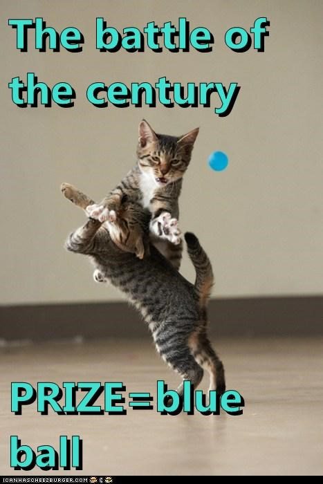 The battle of the century   PRIZE=blue ball