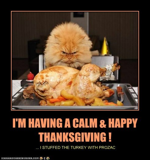 I'M HAVING A CALM & HAPPY THANKSGIVING !