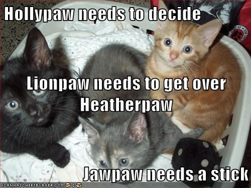Hollypaw needs to decide Lionpaw needs to get over Heatherpaw Jawpaw needs a stick