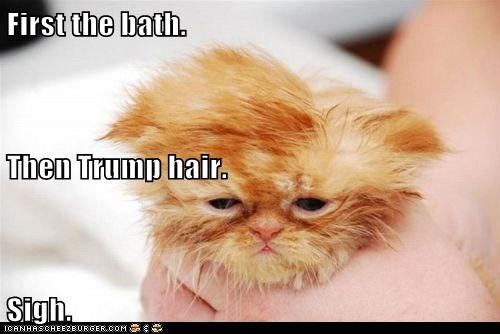 First the bath. Then Trump hair. Sigh.