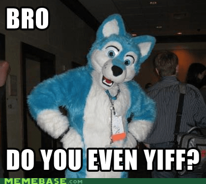 Furry Query
