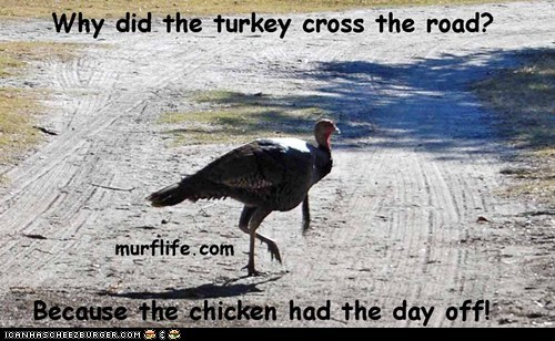 Thanksgiving joke